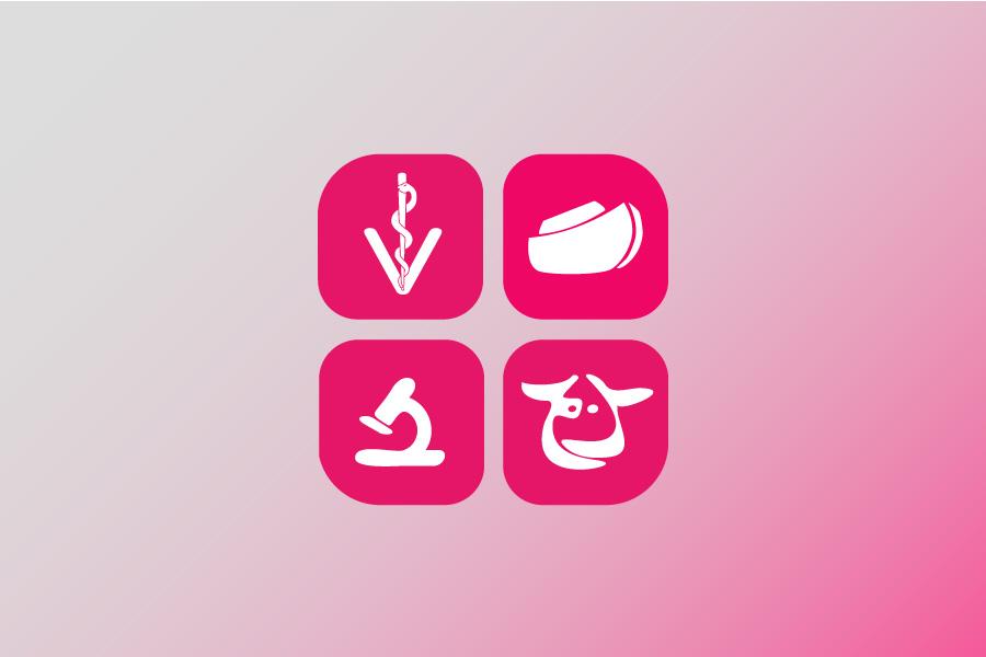 """L'AVHIC ofereix la píndola formativa """"Eines per a la recerca de legislació alimentària"""" - Actualitat - COVB"""